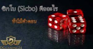dg casino-dggame